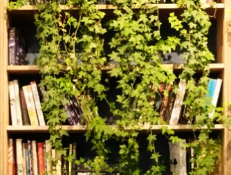 Kirjahylly, jossa kasvit peittävät osan hyllyä. En bokhylla där växterna döljer en del av bokhyllan.